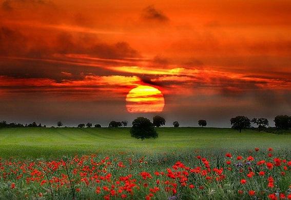 Красота и очарование природы